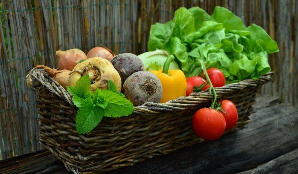 Best Deli Salads Recipes